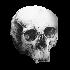 Attached Image: skulltest10.png