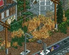 screen_223_Wasteland - Riverside