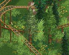 screen_447 Forest Slide