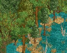 screen_557_foliage testing