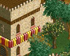 screen_6194 NE Designs Central Servers - Desert Castle